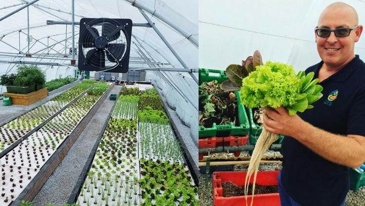 aquaponics sustainable living