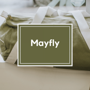 Trends Mayfly