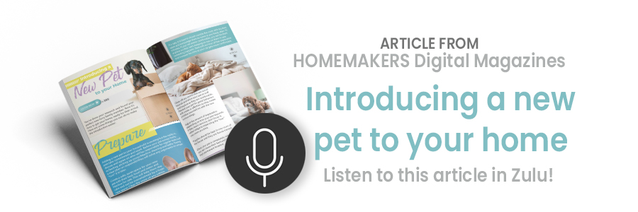 Introducing a new pet to your home